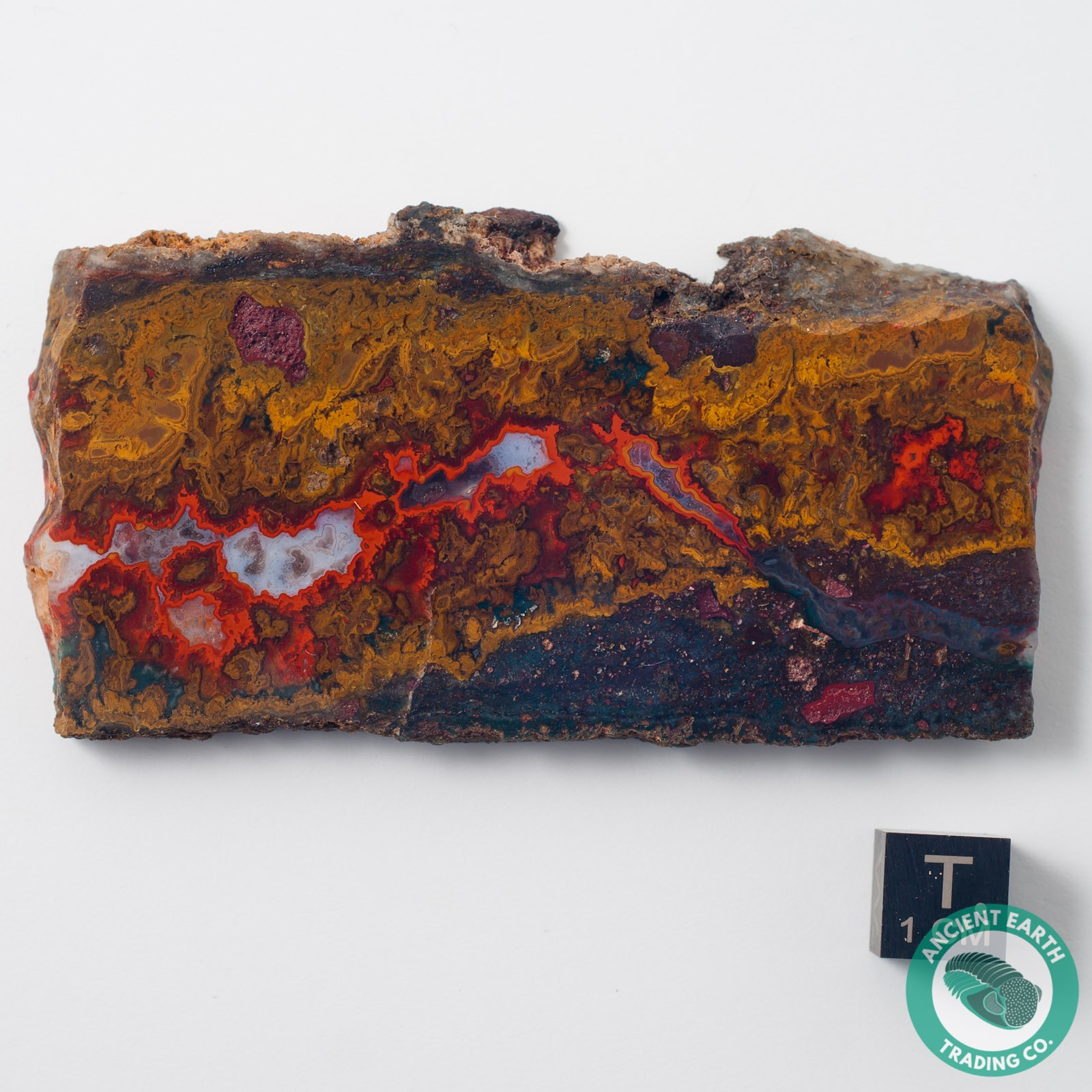 3.33 in Sagenite Red Vein Agate - Morocco