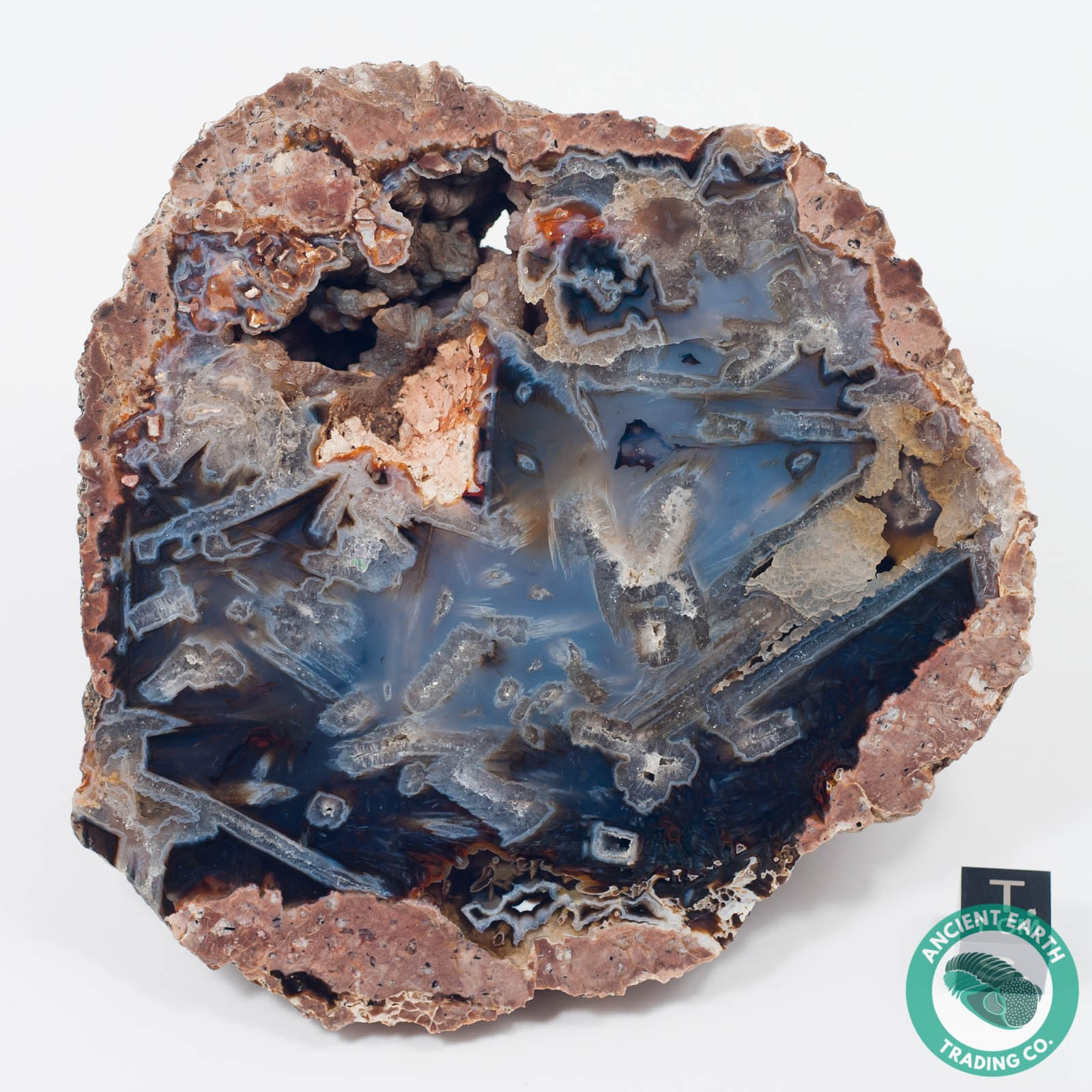 4.43 in Red + Blue Turkish Stick Agate Thunderegg