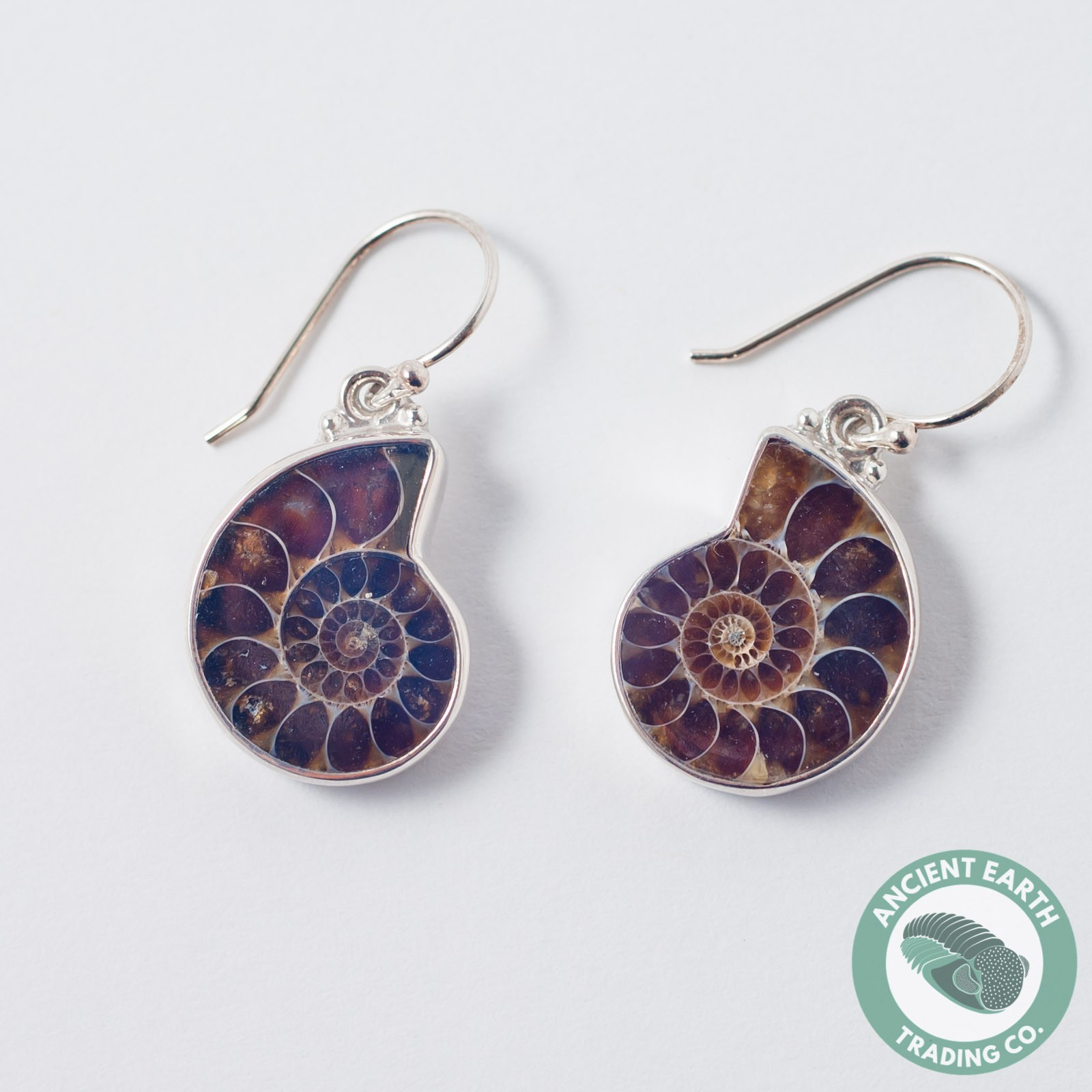 Ammonite Fossil Earring Pair 20 mm .925 Sterling Silver