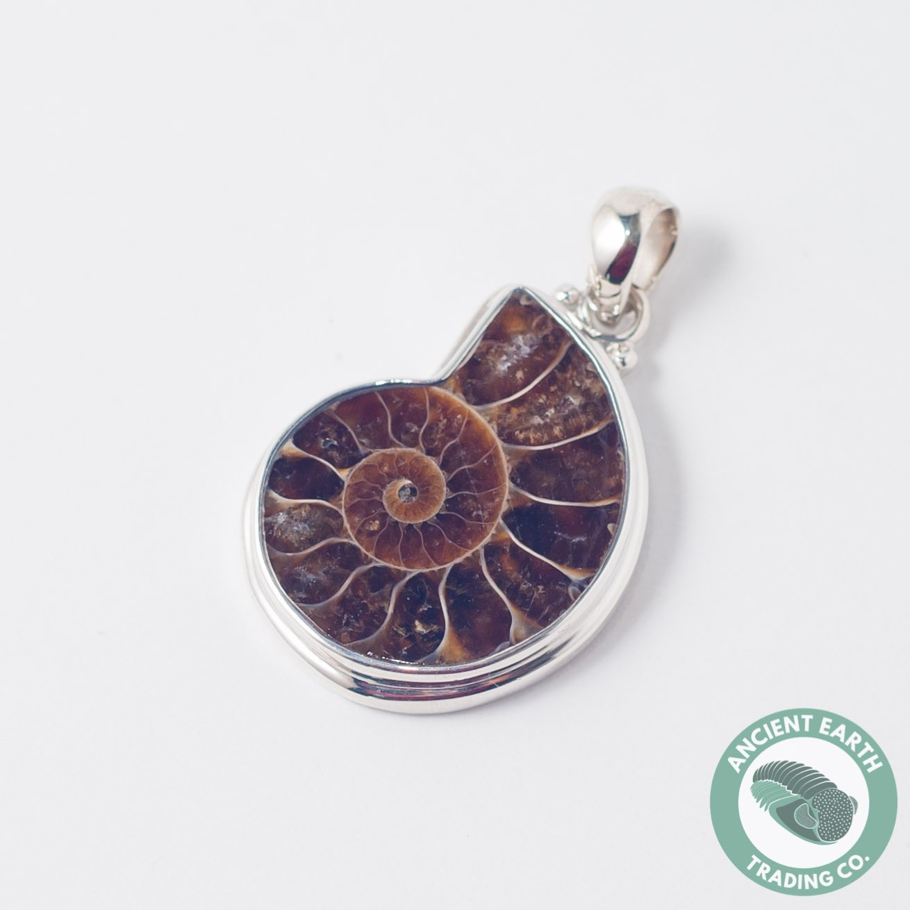 30 mm Ammonite Fossil Pendant .925 Sterling Silver