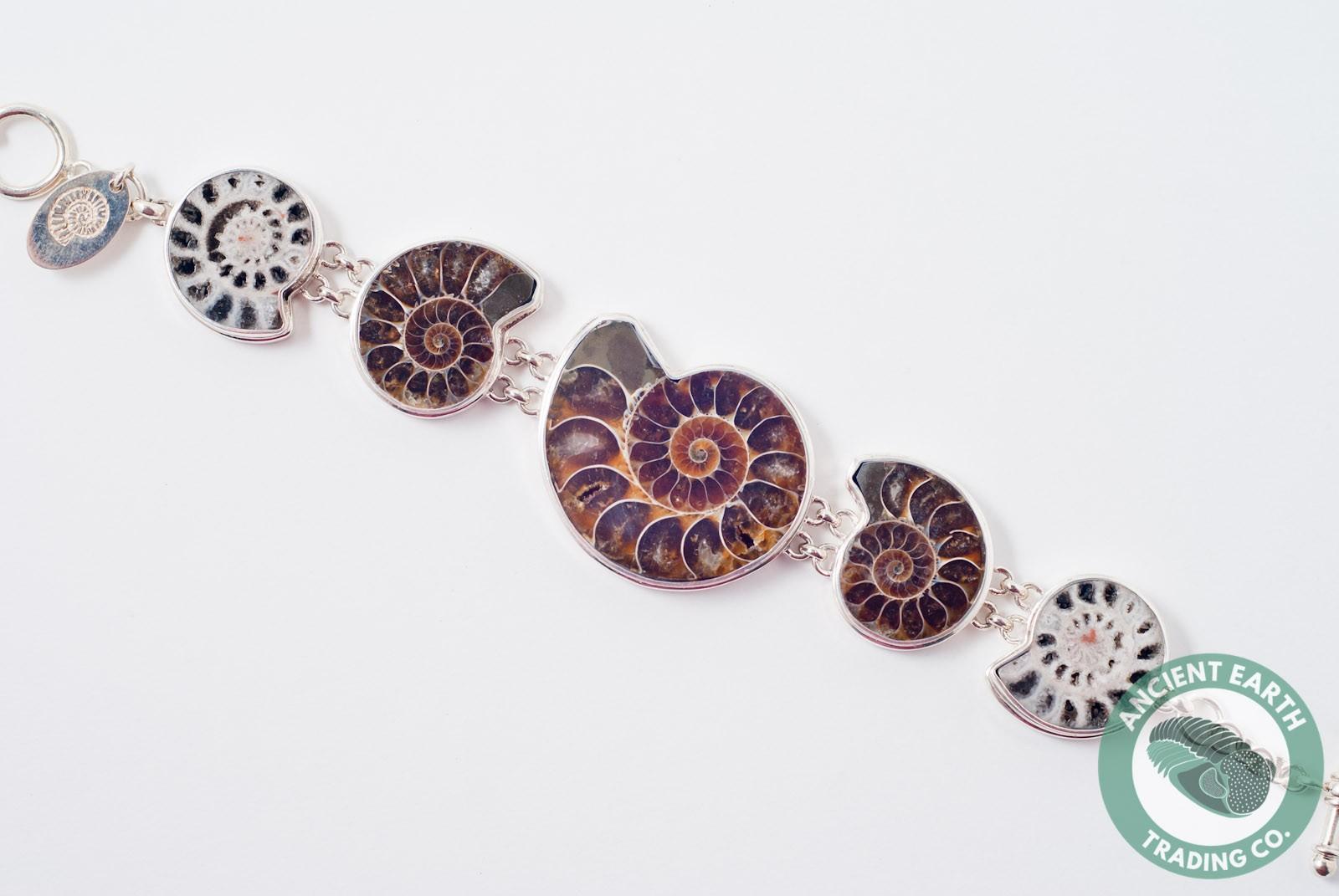 230 mm 5 Ammonite Fossil Bracelet .925 Sterling Silver