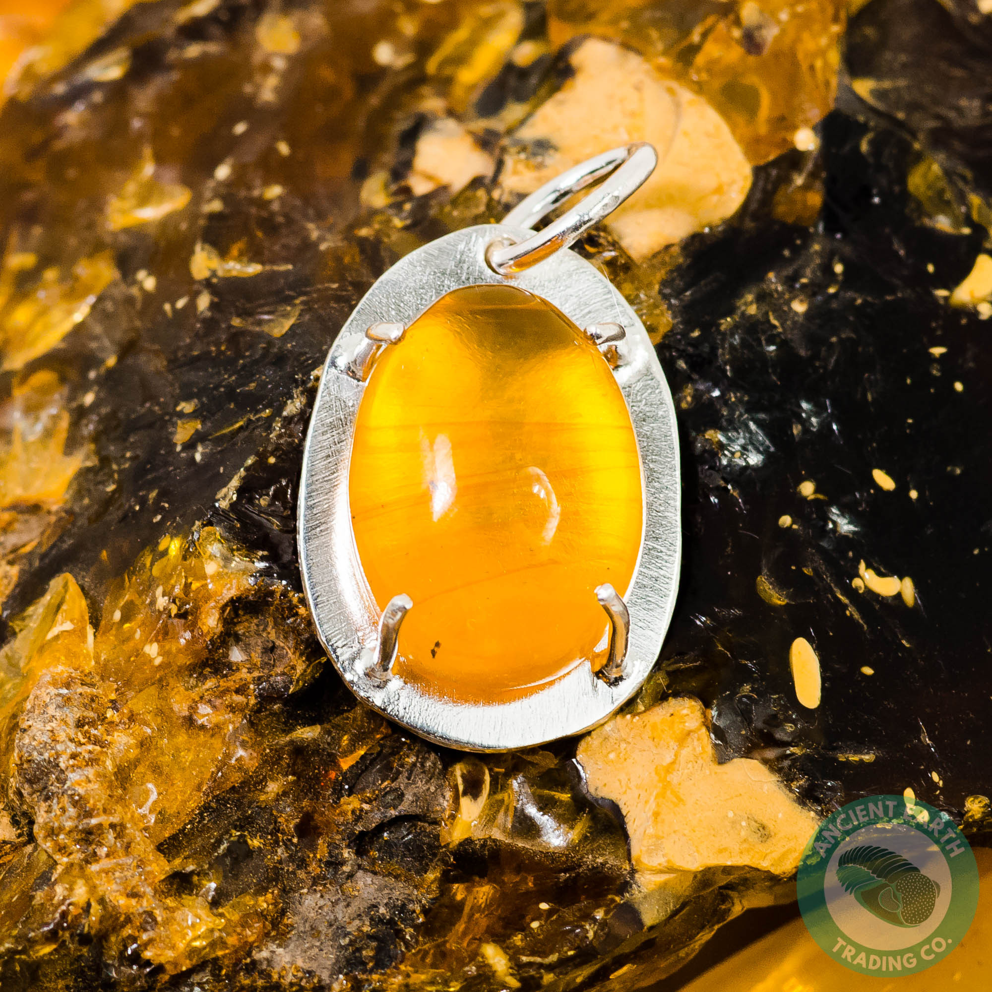 24mm Dominican Amber Fossil Insect Sterling Silver Pendant