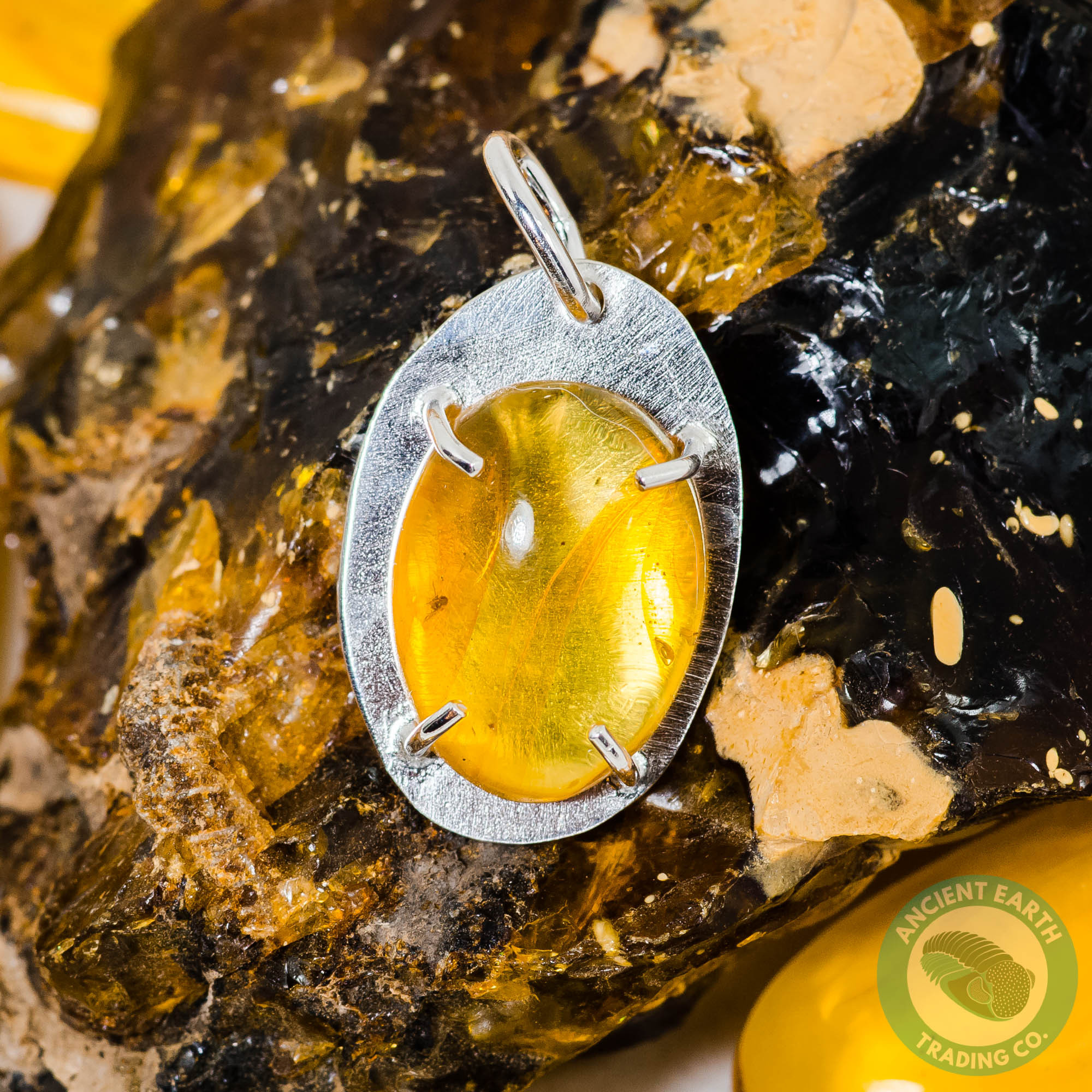 25mm Dominican Amber Fossil Pendant Beetle Insect with a Methane Bubble set in Sterling Silver