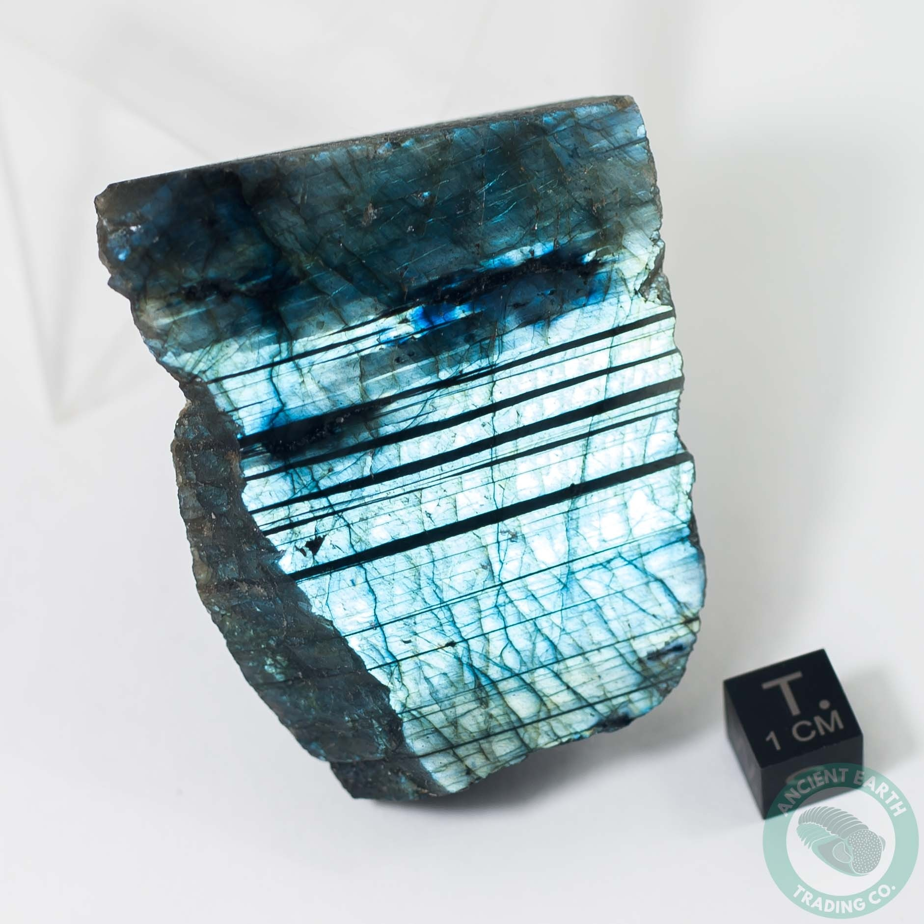 2.39 in Labradorite Face Polished Electric Blue Iridescence