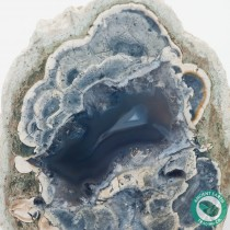 3.9 in Root Beer Agate Geode Thunderegg HWY 46 - California