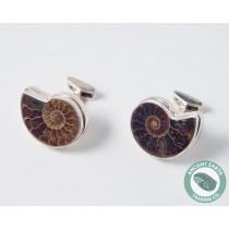 Ammonite Fossil Cufflinks 23 mm .925 Sterling Silver