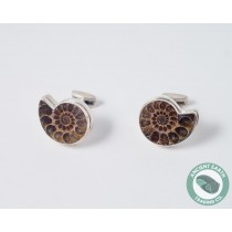 Ammonite Fossil Cufflinks 24 mm .925 Sterling Silver