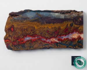 3.47 in Large Red Sagenite Vein Agate - Morocco