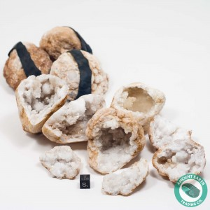 "2"" Quartz Crystal Geode - 3 Pack - Morocco"